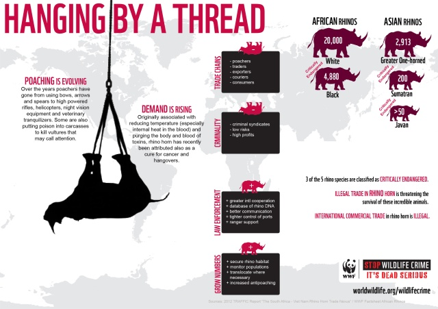 HangingByAThread-Rhino-Infographic_10.11.2012_Stop-Wildlife-Crime