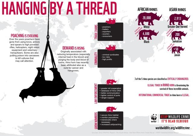 HangingByAThread-Rhino-Infographic_10.11.2012_Stop-Wildlife-Crime