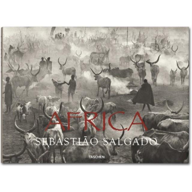 cover_fo_salgado_africa_1310111209_id_4422-800x800
