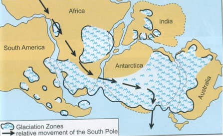 Movimento del Polo Sud (freccia) durante il periodo del Gondwana (da Nicole Grunert)